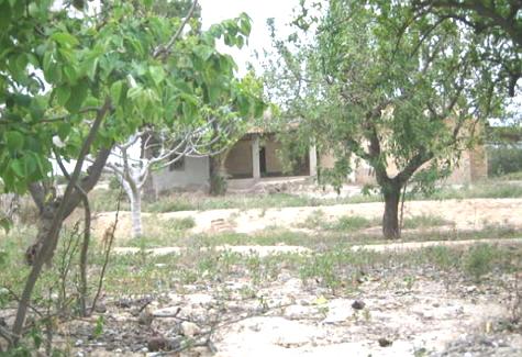 Casa de campo en carretera de Aspe-Crevillente
